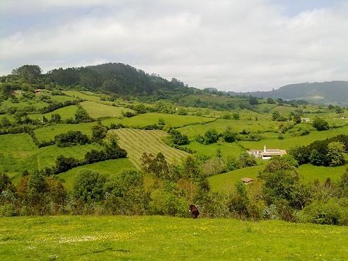Los j venes vuelven al campo xata roxa ternera roxa - Casa de campo asturias ...